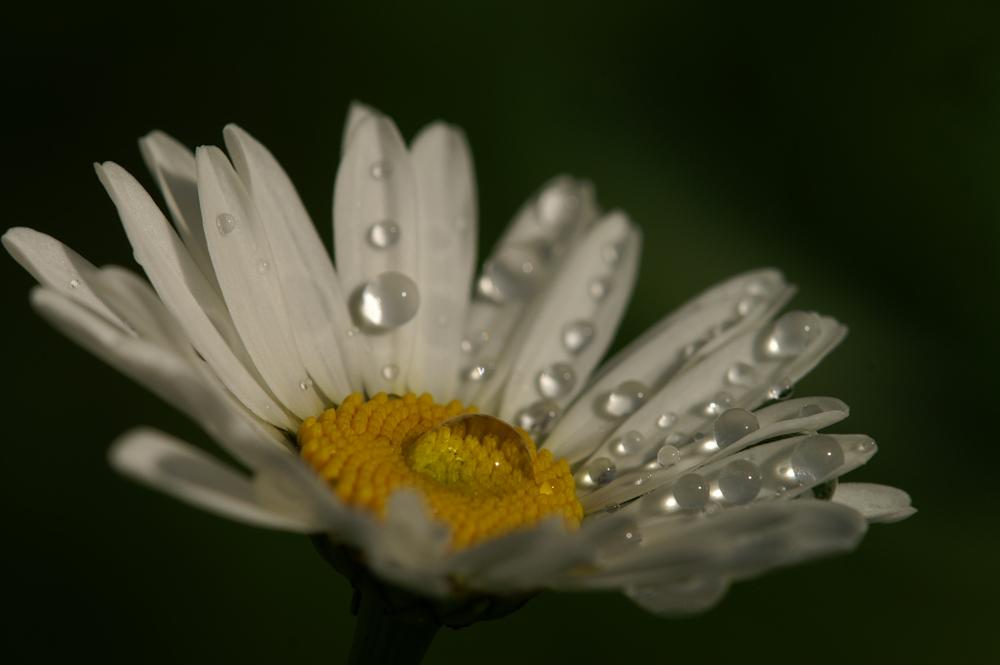 Kurze Regenpause