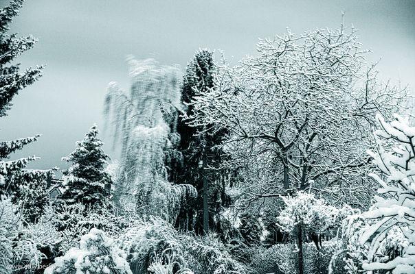 kurzer wintereinbruch