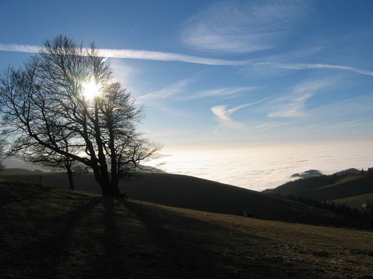 Kurzurlaub über dem Nebel