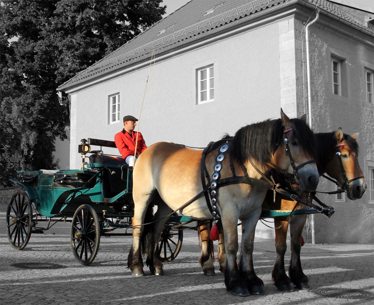 Kutsche beim Rossmarkt in Worbis