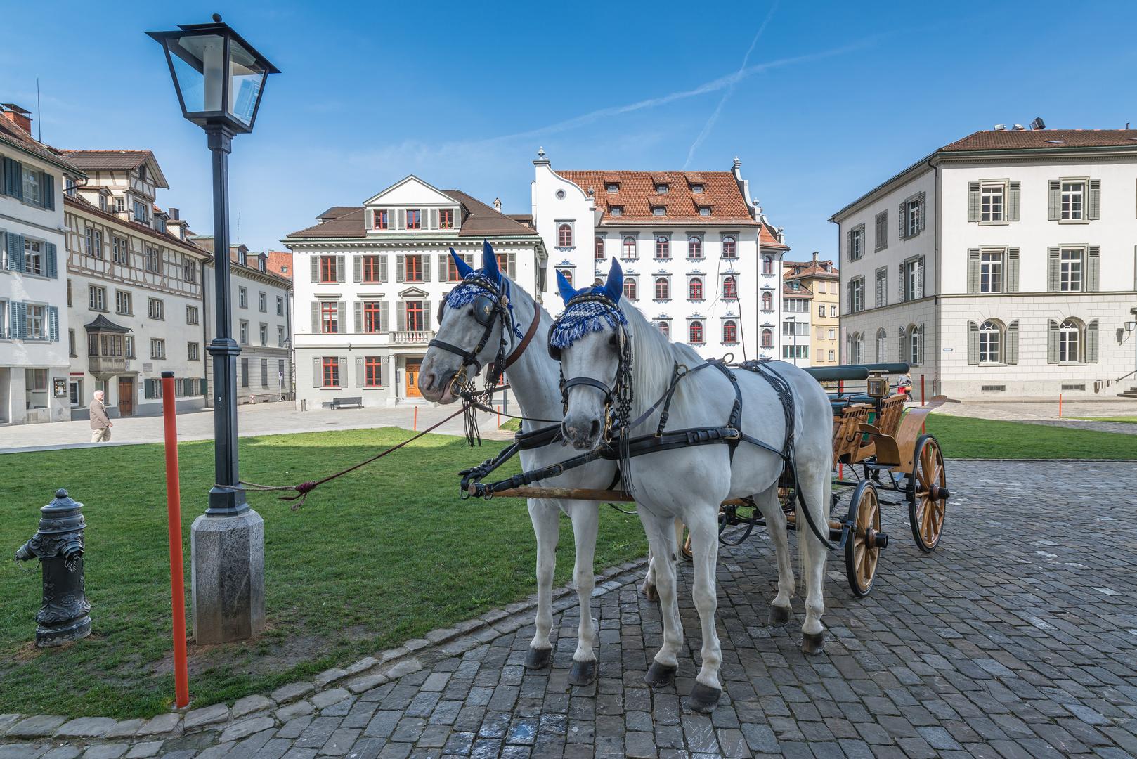 Kutsche in der Altstadt von St.Gallen