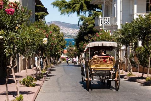 Kutschenfahrt auf Büyük Ada