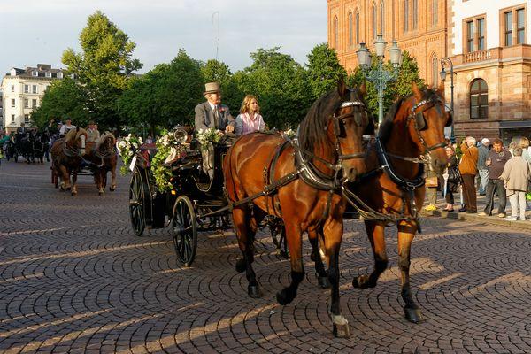 Kutschenkorso zu Pfingsten am Rathaus Wiesbaden