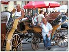 Kutscher in der Toscana