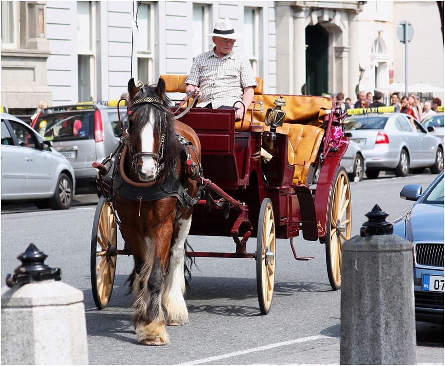 Kutschfahrt durch Dublin