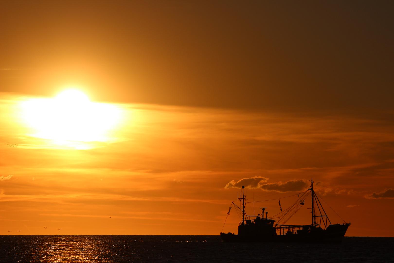 Kutter im Sonnenuntergang bei St. Peter-Ording