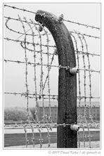 KZ Buchenwald IV