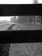 KZ Dachau (1)