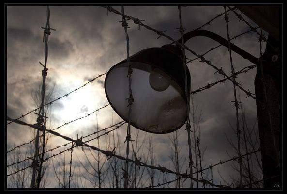 KZ Dachau - 5