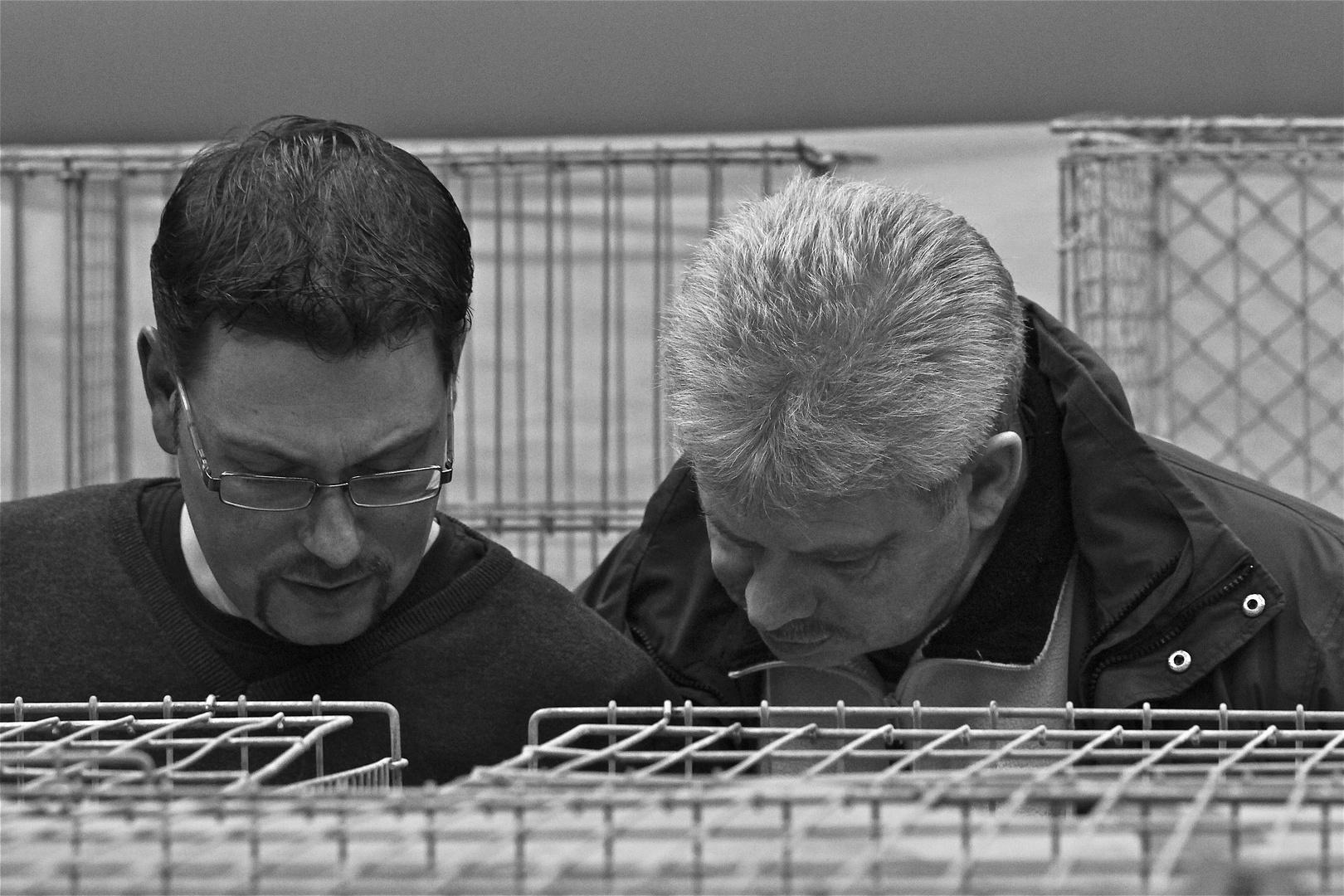 KZV Zeilhard/Odenwald, 24.11.2012 (5)
