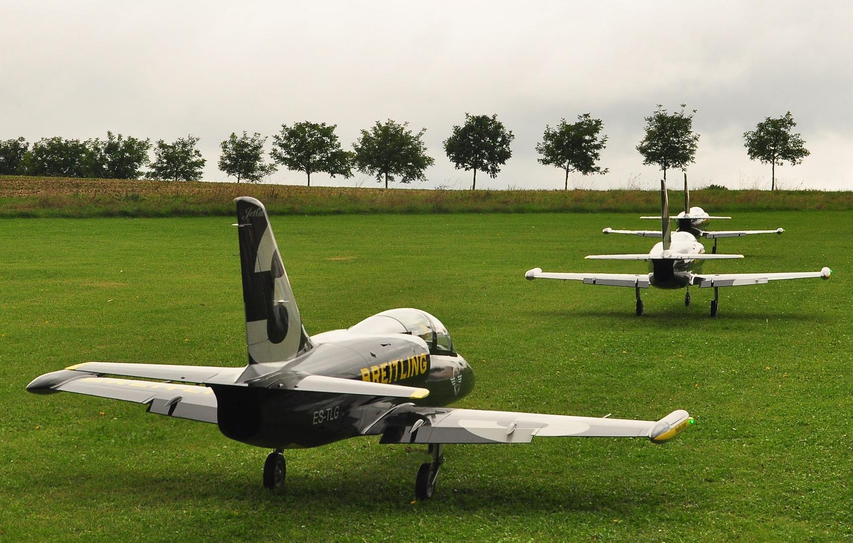 L 39 - Albatros
