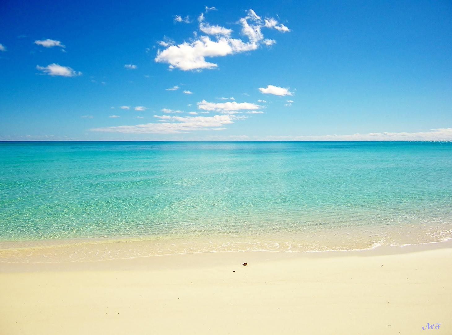 L' été austral