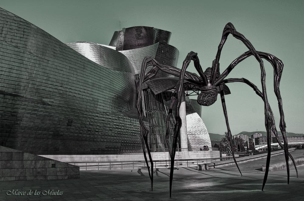 ...la araña g....