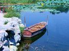 La barque aux nénuphars