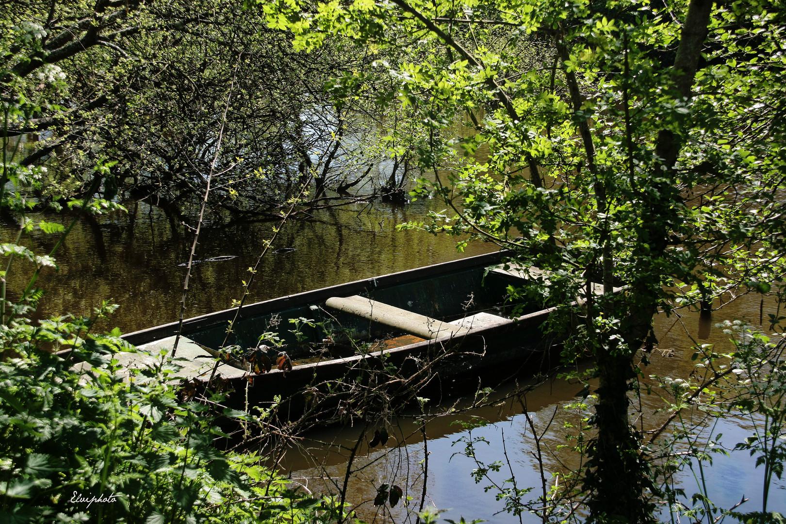 La barque bien dissimulée