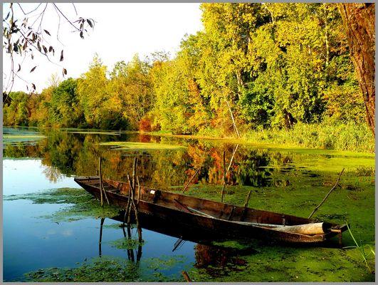 La barque plate dans son silence automnale ....