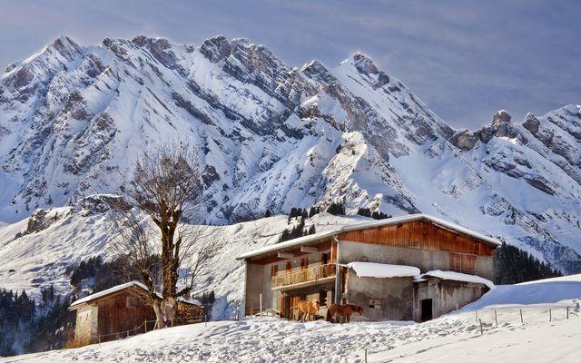 La beauté de la montagne