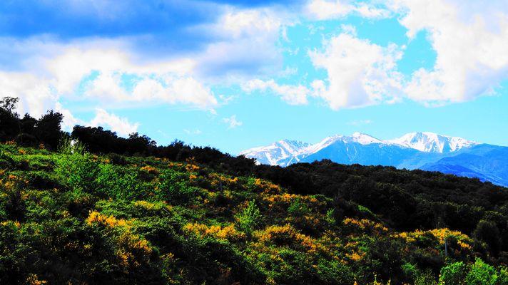 la beaute de la nature