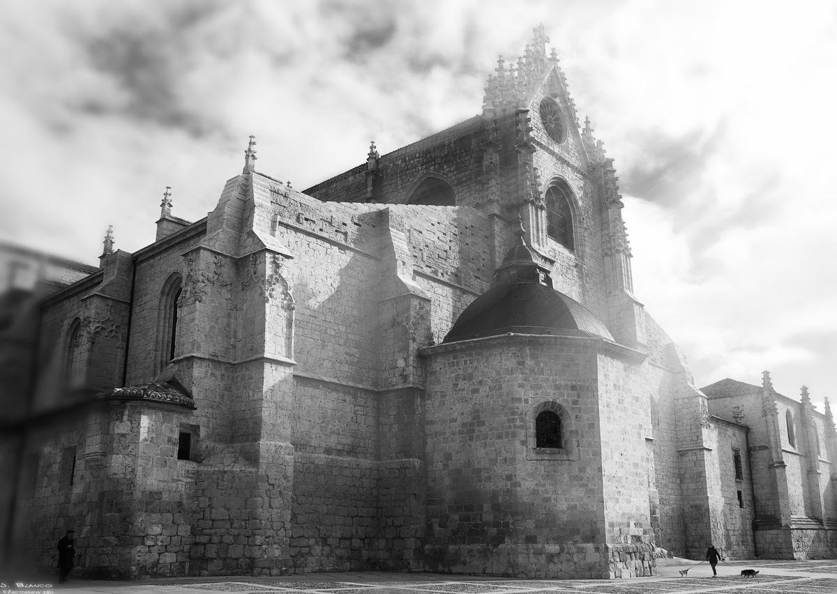 """""""La Bella Desconocida"""", Catedral de San Antolín. Palencia"""