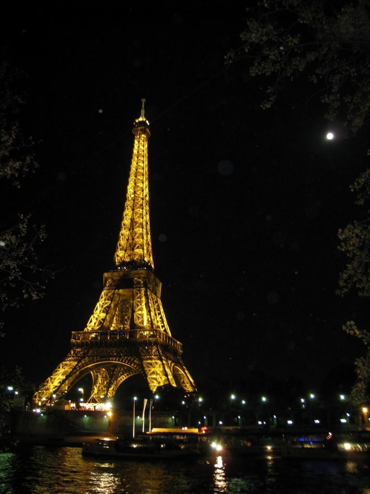 La belle de nuit