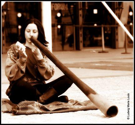 La belle et le Didgeridoo. 02