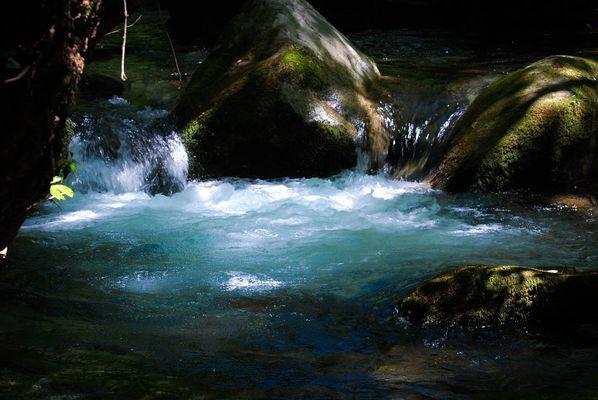 La belle nature