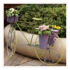 la bicyclette fleurie
