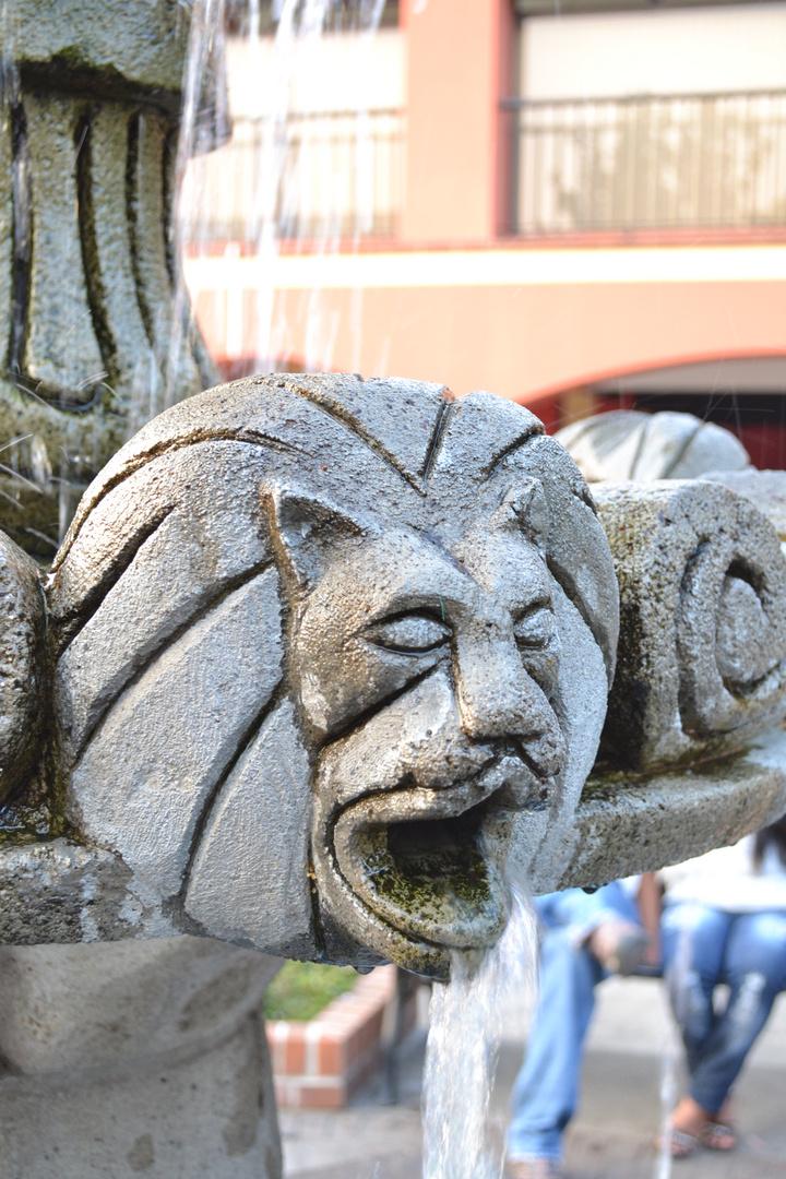 La boca del león