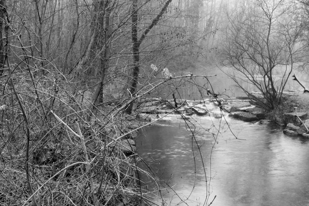 la brume en noir et blanc