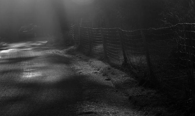 La brume se léve et l'obscurité grandit