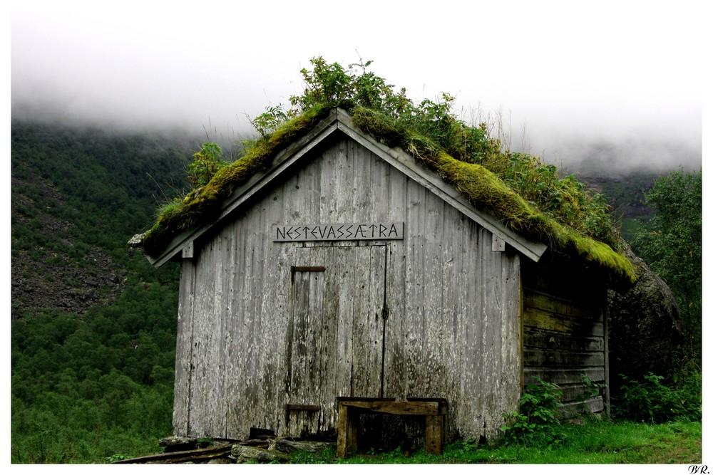 La cabane au fond du bois photo et image europe for Cabane en bois 5m2