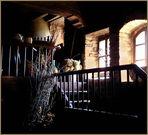 ....la cantina del castello---