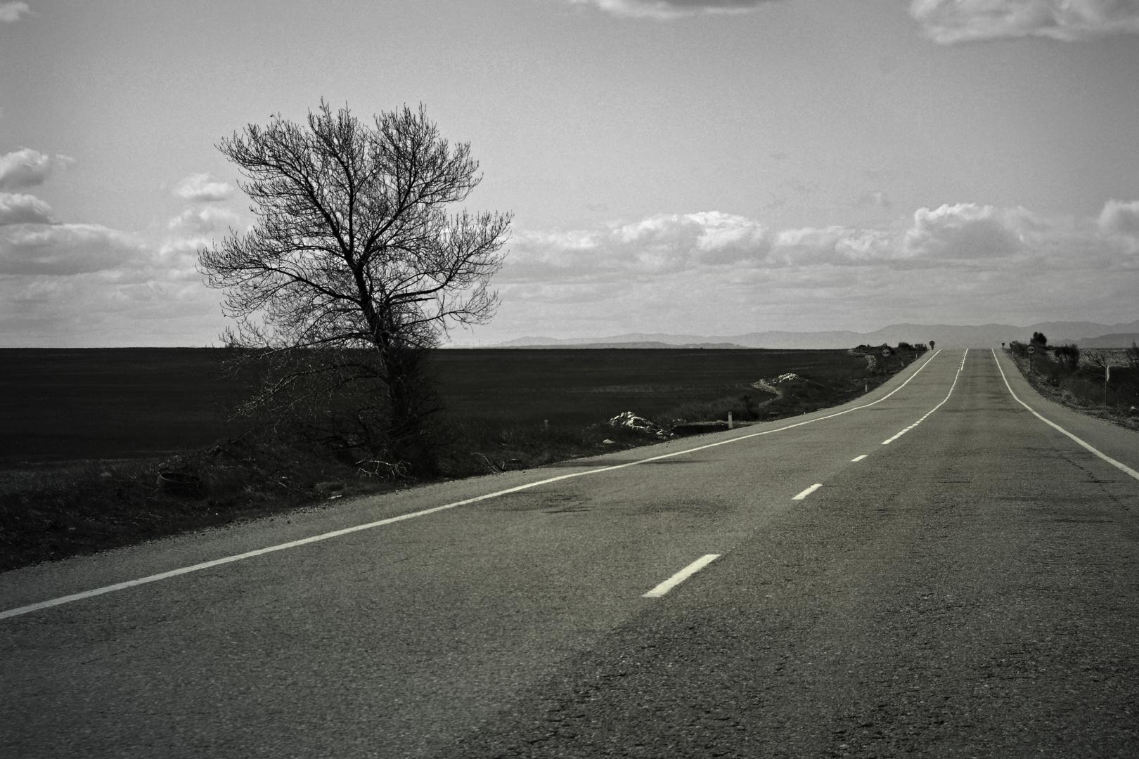 La carretera de la vida siempre mira hacia otro lado.