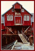 La casa dei gabbiani Isole Lofoten