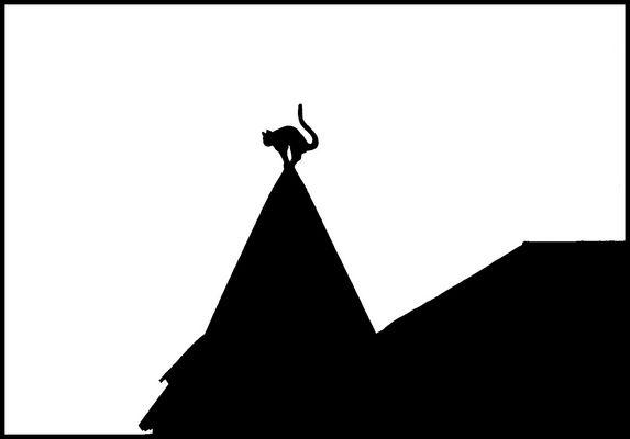 La casa del gatto...in bianco nero