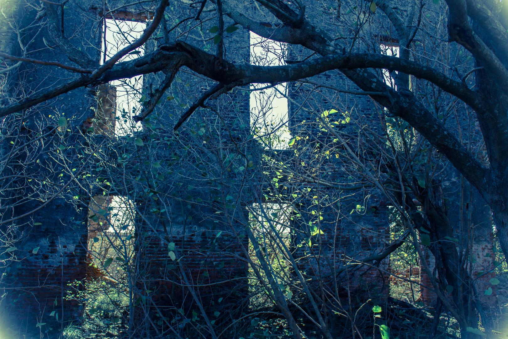 La casa embrujada IV