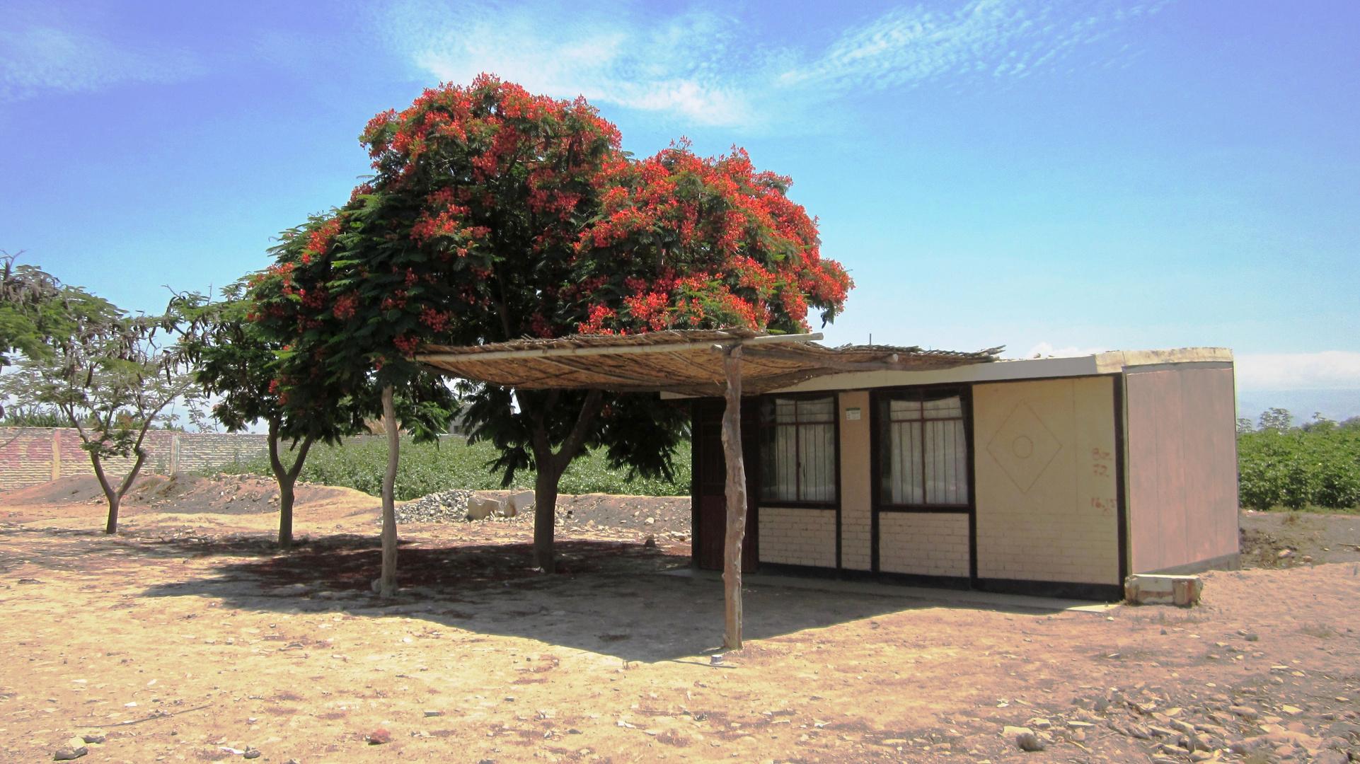 La casita rural