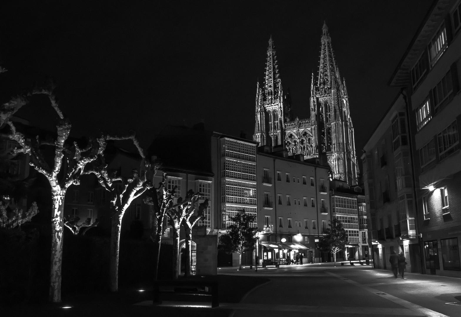 La Catedral de Burgos nocturna