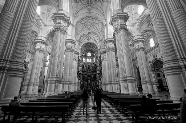 ...la catedral de Granada...