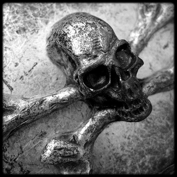 La Ceinture Du Pirate