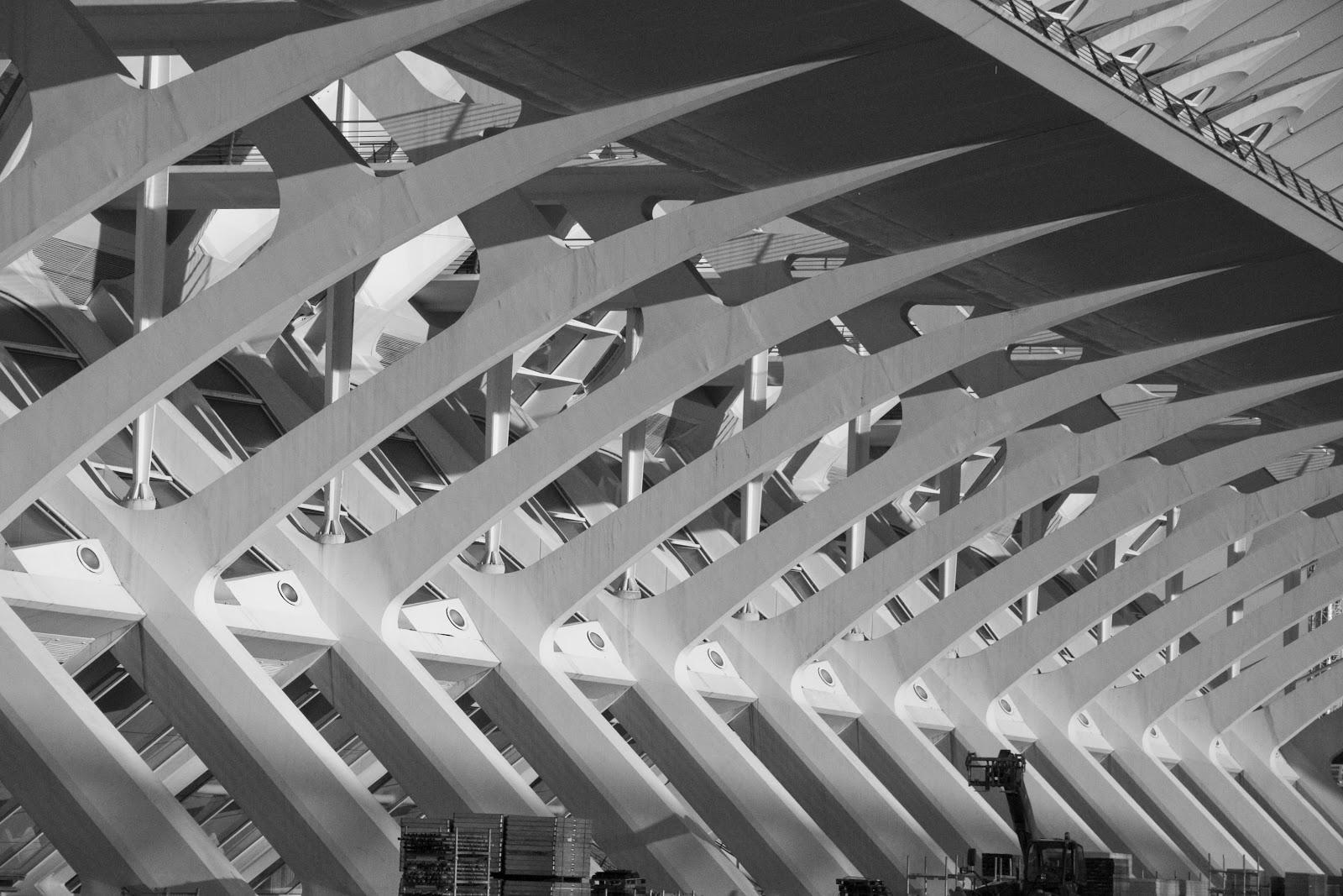 La Ciutat de les Arts i les Ciències de València (2)