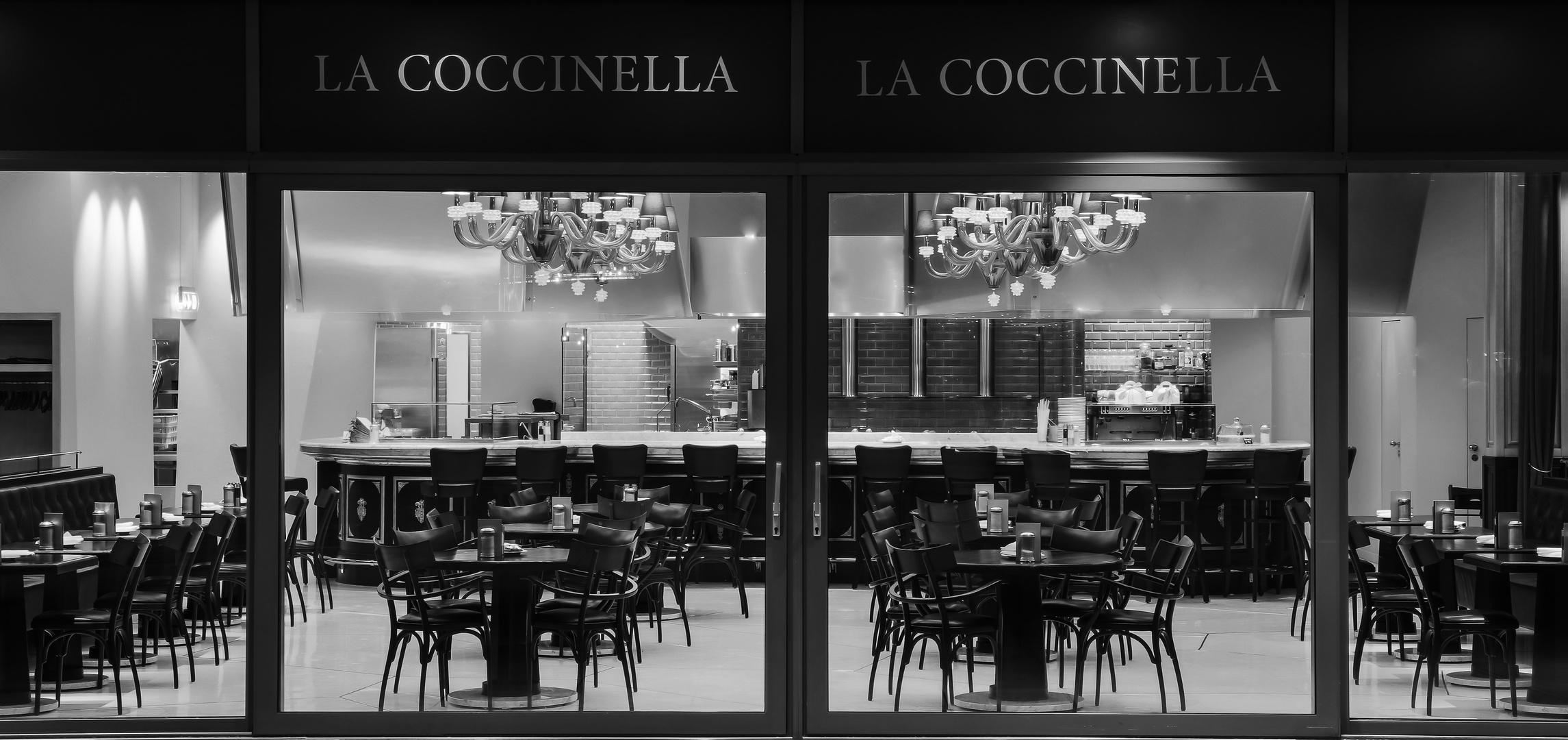 """""""La Coccinella"""""""