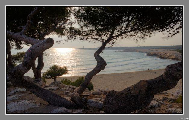 La côte bleue, secteur de Ste croix
