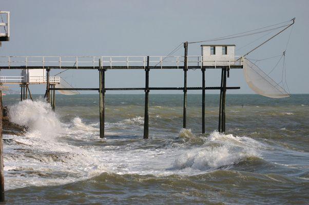 la côte de beauté 1
