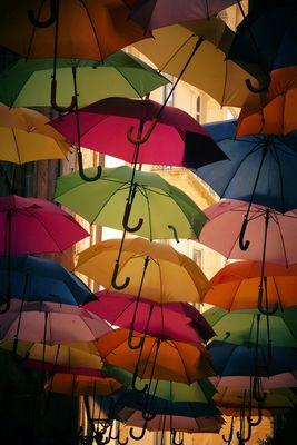 La couleur des parapluies