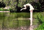 La dame du lac