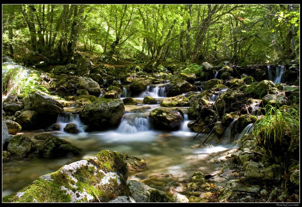 L dove vivono le fate foto immagini paesaggi laghi - Cimici dove vivono ...