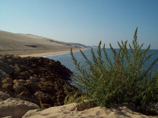 La dune de Pyla