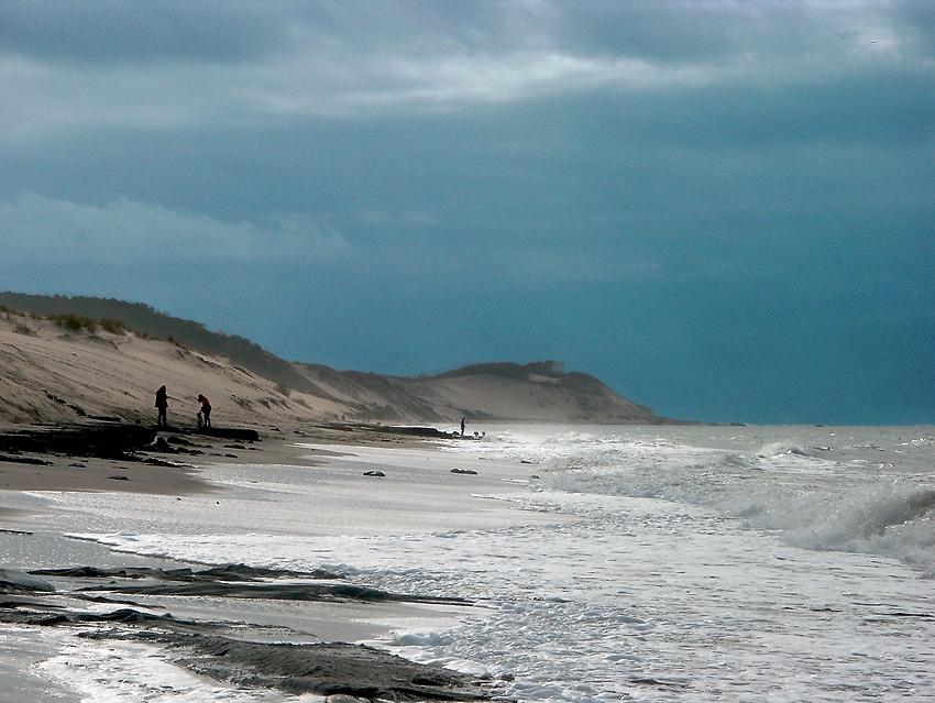 La dune en automne