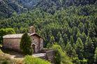 La Ermita del Bosque